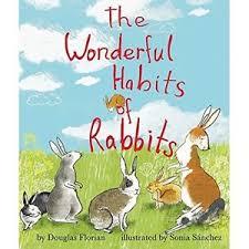 The Wonderful Habits of Rabbits